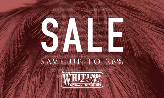 Whiting Sale
